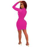 Rhinestone Hot Pink High Neck Mesh Panel Bodycon Dress