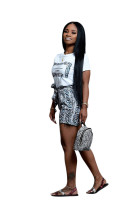 Gray Snakeskin Print Two Piece Casual Shorts Set