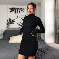 High Neck Black Ribbed Bodycon Dress with Sleeve