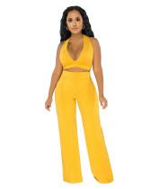 Plain Halter Crop Top and High Waist Pants Set