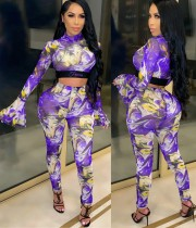Print  Colorful Flare Cuff Crop Top and Pants Set