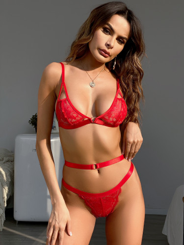 Red Lace Bra and Pantie Sexy Lingerie Set