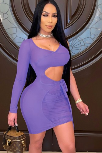 See Through Purple Cut Out Mini Bodycon Dress with Single Sleeve