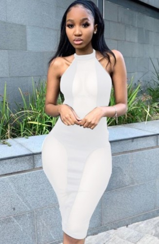 Mesh Patch White Halter Long Fitted Dress