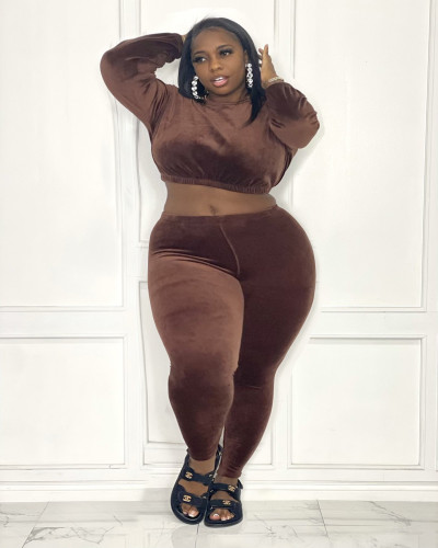 Plus Size Brown Velvet Crop Top and Pants Two Piece Set