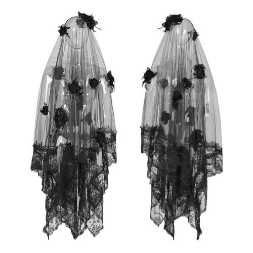 Gothic gorgeous lace veil
