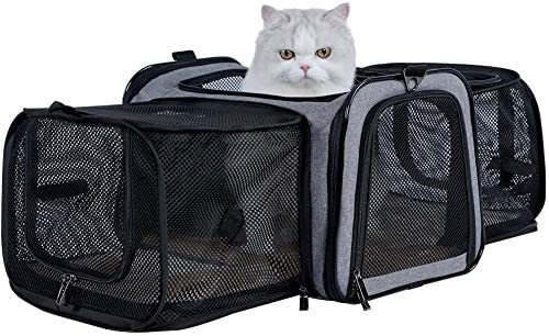 Petsfit Most Airline Approved Solid Expandable Soft-Sided Carrier with 2 Large Extensions for Pets up to 15 Pounds