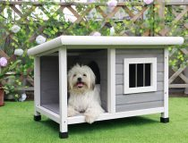 Petsfit Outdoor Dog House