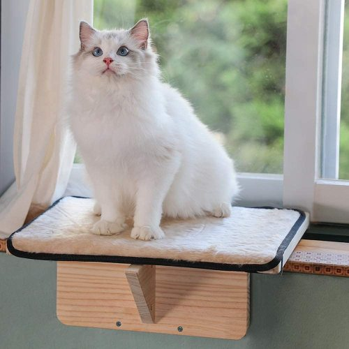 Petsfit Safety Sturdy Cat Window Perch, Not Fit All Windows