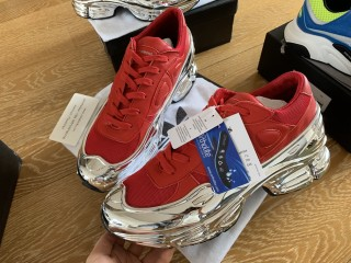Raf Simons x Adidas Consortium Ozweego Silver/Red