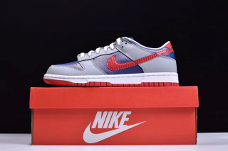 Nike Air SB Dunk Grey Blue