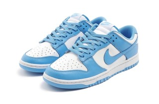 Nike Air SB Dunk UNC