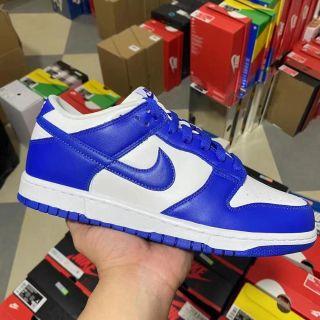 Nike Air SB Dunk Low White Blue