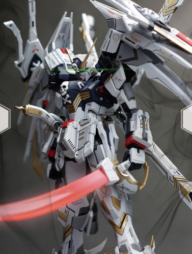 MG 1/100 Mobile Suit Crossbone Gundam X1 X2 X3 Garage Kit 3D printed resin does not include Bandai models