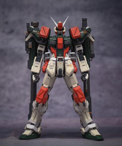 MG 1/100 Buster Gundam seed GAT-X103 Garage Kit 3D printed resin does not include Bandai models