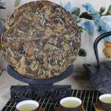 Premium Aged Organic Shou Mei Tea Cake Longevity Eyebrow Fuding White Tea 300g
