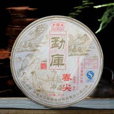 Spring Tip * 2007 Yunnan Shuangjiang Mengku Pu Erh Puer Puerh Raw Shen Cha 400g