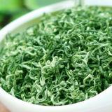 Supreme Organic Suzhou Bi Luo Chun Green Snail Spring Green Tea Biluochun Tea