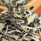 Yunnan Jing Gu Puer Moonlight White Buds Pu'er Puerh Loose Leaf Tea Raw Premium