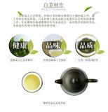 Fuding Organic Gong Mei Tribute Eyebrow High Mountain White Tea Shou Mei 300g
