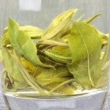 Yunnan Green Tea Organic Spring Bi Luo Chun Green Tea BiLuoChun Green Snail Spring Pi Lo Chun