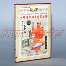 Disc The original Boxing Tree Of Traditional Shaolin Kung Fu Small Arhat Boxing  1 DVD
