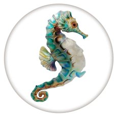 20MM Painted sea horse enamel metal C5688 print snaps jewelry
