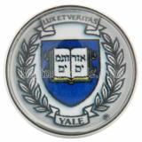 20 мм защелкивает стекло эмблемы университета C0792 Эмблема университета