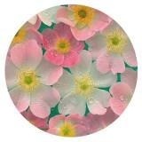 20MM Painted Flowers Emaille Metall C5656 Druck schnappt Schmuck