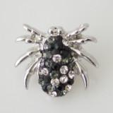 паук животных с кристаллами