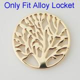 33 mm Alloy Coin fit Locket jewelry type085