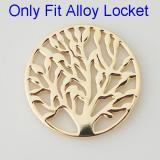 33 mm Alloy Coin fit Medaillon Schmuck Typ085