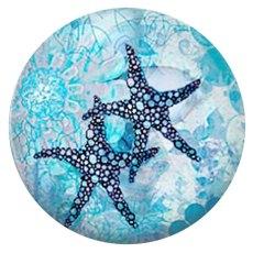 20MM Starfish Métal peint C5891 print cyan