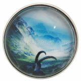 20MM snaps glass of scene C0694 interchangable snaps jewelry