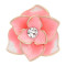 20MM snap gold Plated  Flowers pink enamel with With  rhinestones KC8122 snaps jewerly