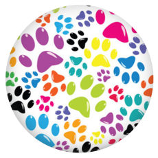 20MM Dog paw print Painted enamel metal C5949 print snaps jewelry