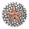 20MM Starfish Snap Rose-Gold Plated KC6623 Snaps Schmuck