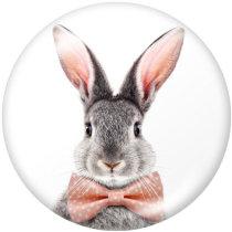 20MM  rabbit Print glass snaps buttons