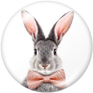 20MM Kaninchen Druckknöpfe mit Glasdruckknöpfen