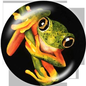 20 MM Frosch Drucken Sie die Druckknöpfe aus Glas