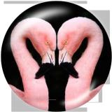 Стеклянные кнопки с принтом Flamingo LOVE, 20 мм