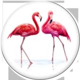 Стеклянные кнопки с принтом Flamingo LOVE 20MM Beach Ocean