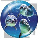 20MM marine organism Print glass snaps buttons