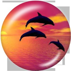 Стеклянные кнопки с принтом морских организмов 20 мм