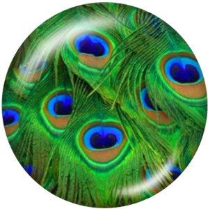 Botones a presión de vidrio con estampado de plumas de pavo real de 20 mm