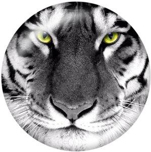 Botones a presión de vidrio con estampado de tigre de 20 mm