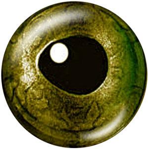 Botones a presión de vidrio con estampado de ojos de 20 mm