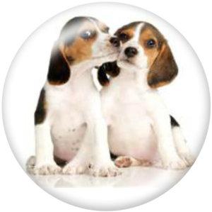 Стеклянные кнопки с принтом мультфильмов животных 20 мм