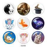 20MM  Cat  rabbit  Print  glass snaps buttons