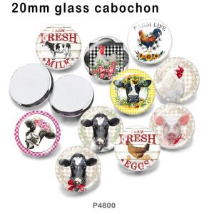 さまざまなサイズの10個/ロットファームガラス画像印刷製品冷蔵庫用マグネットカボション